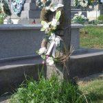 Kopjafa-síremlékek