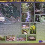 Információs tábla (Csiliz-patak)